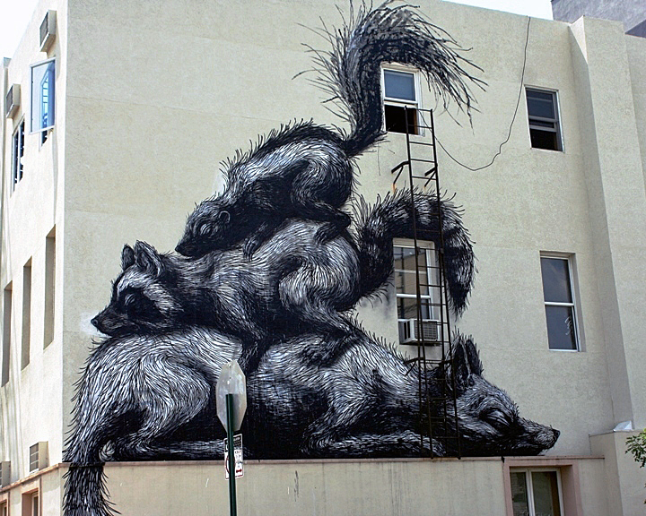 """Roa street art"""