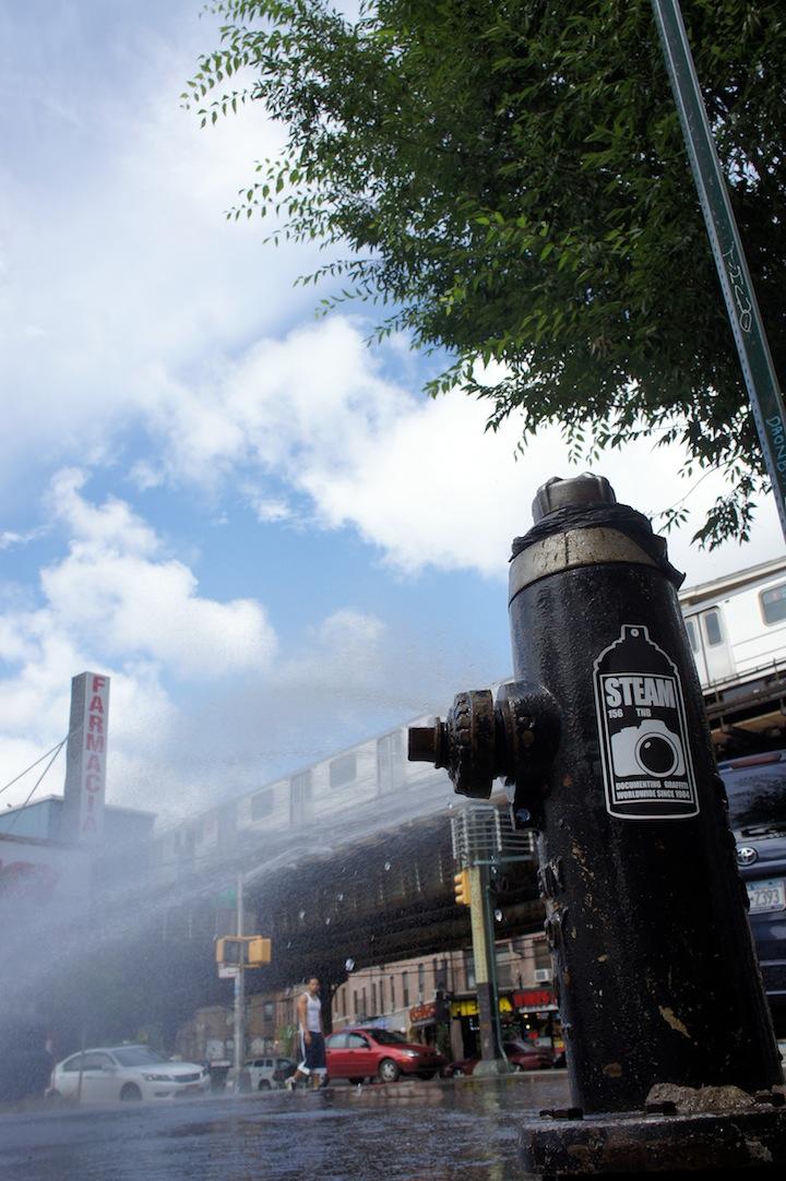 Frank-Malt-Steam156-sticker-NYC