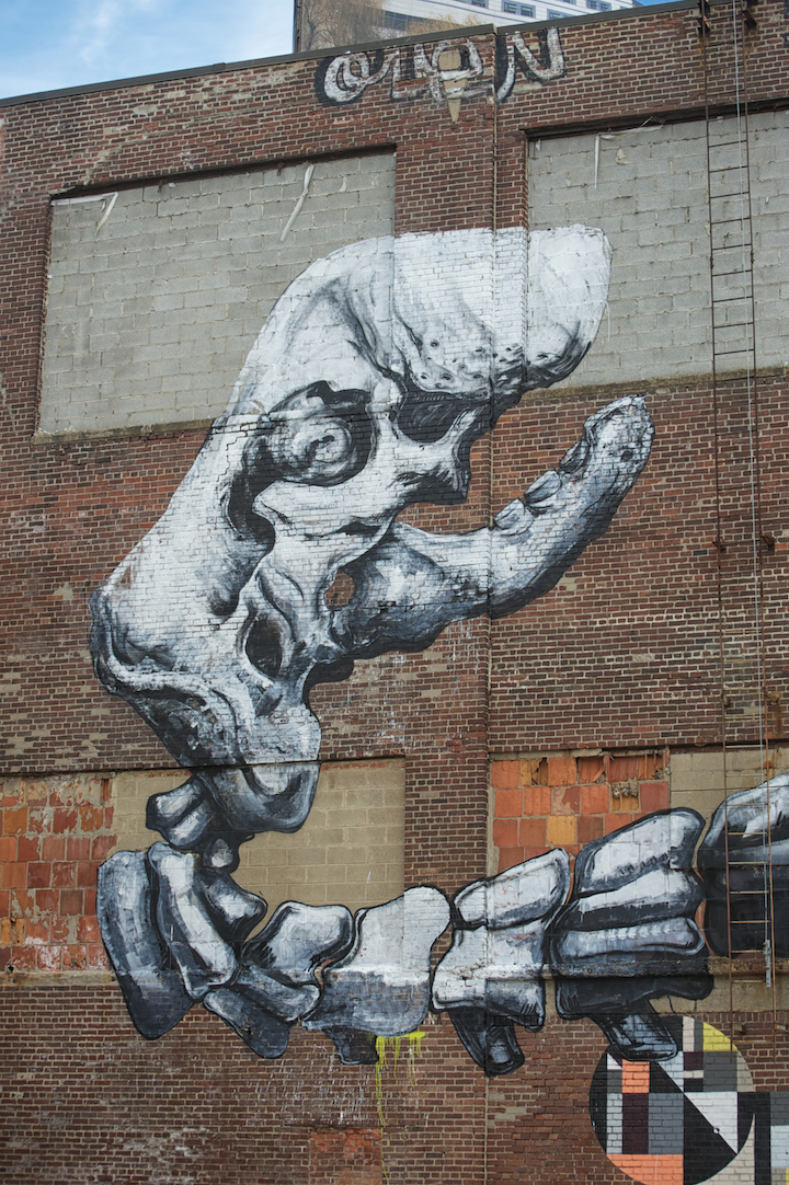 Roa street art Belgian Artist Roa in Jersey City and at the Jonathan LeVine Gallery