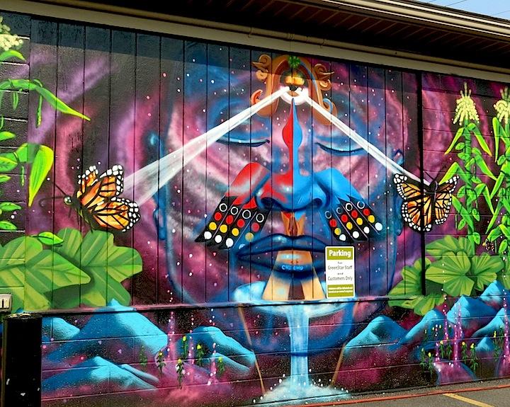 desi-street-art-ithaca-ny