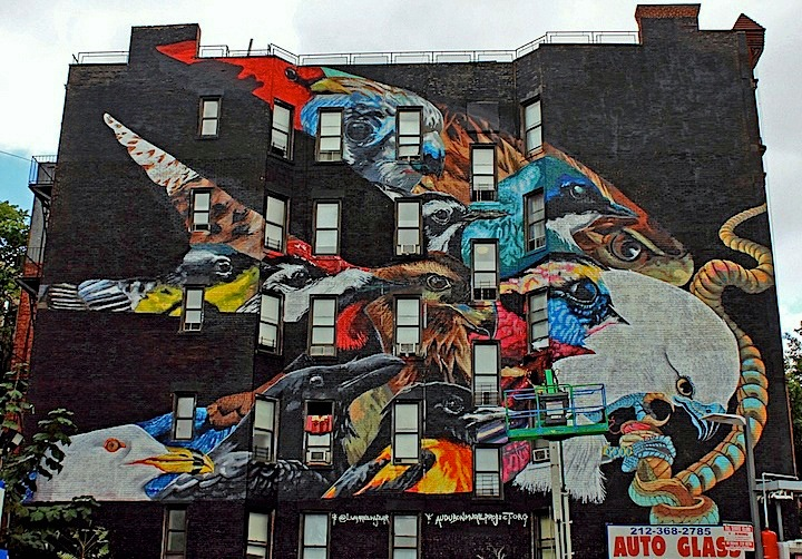 LNY-Audubon-Mural-Project-NYC