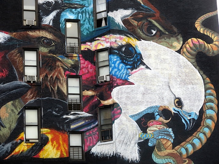 LNY-close-up-audubon-mural-project