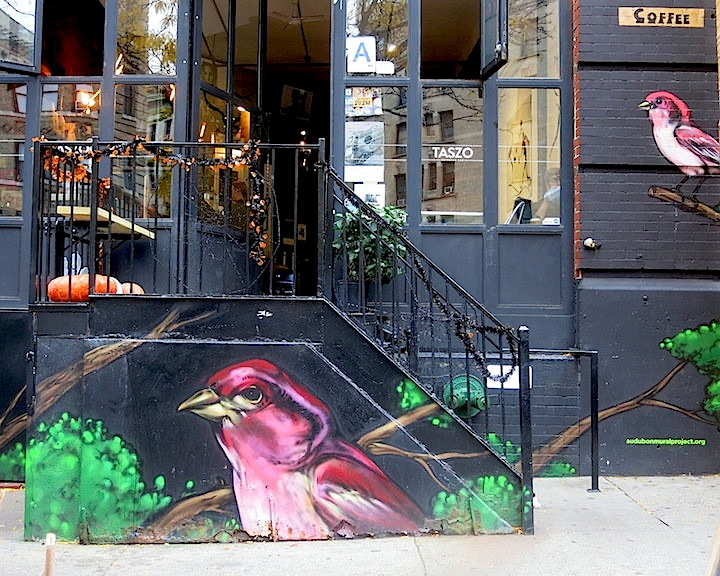 Mr-mustart-street-art-audubon-mural-project-nyc
