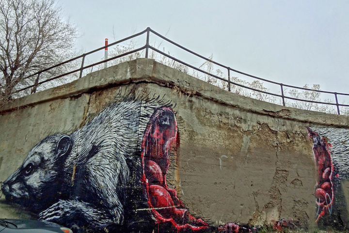 roa-street-art-pilsen-chicago