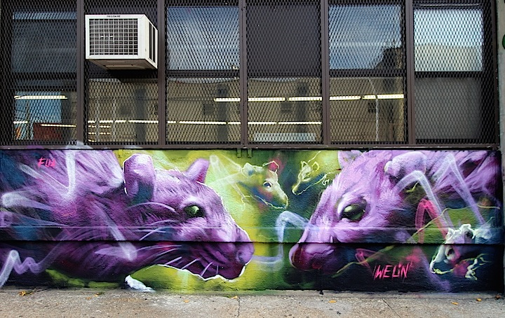 welin-street-art-close-up-LIC-NYC