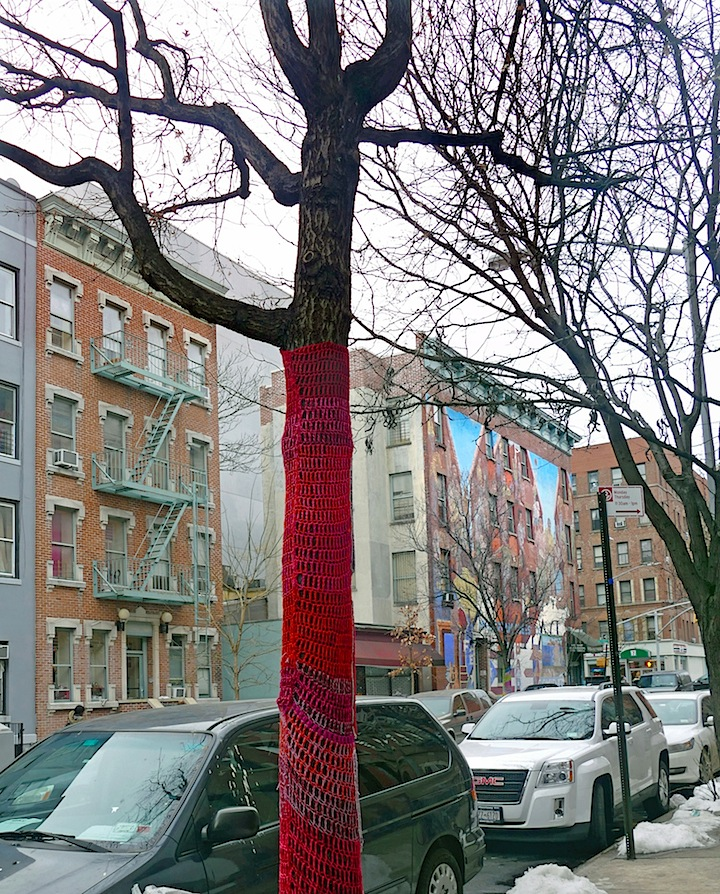 Naomi Rag East HarlemNYC Fiber Artist Naomi RAG Brings Flavor and Flair to East Harlem Trees
