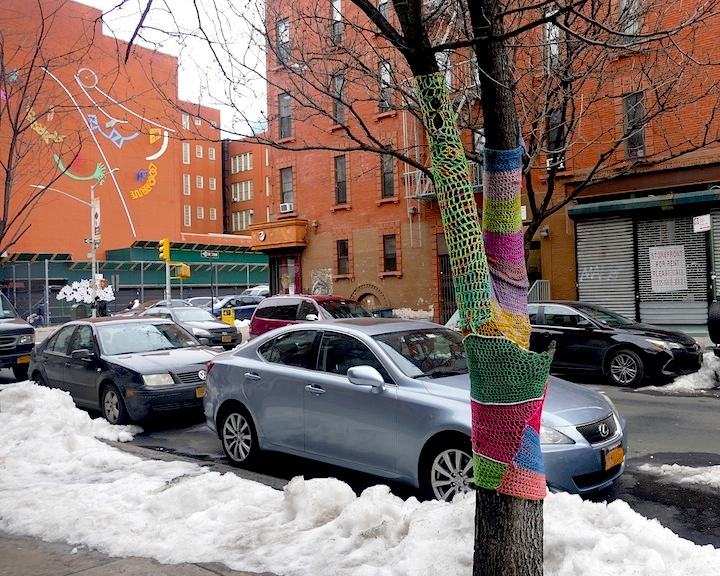 Naomi rag east harlem block Fiber Artist Naomi RAG Brings Flavor and Flair to East Harlem Trees