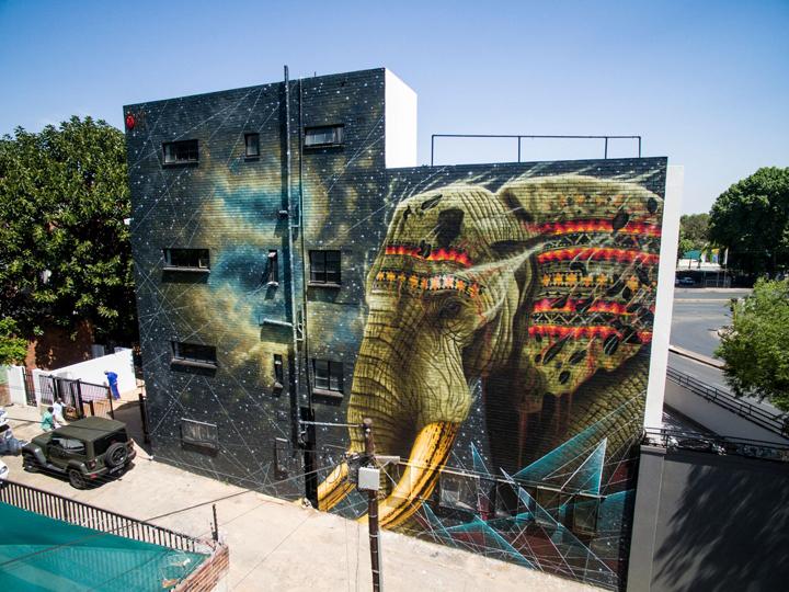 Sonny-Sundancer-mural-art-Jelani- Johannesburg